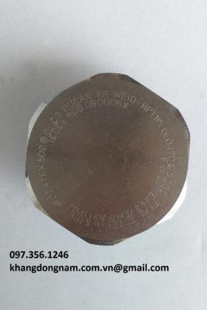 Nút bịt chống cháy nổ OSCG WEID - NPT 1 1/2 (1)